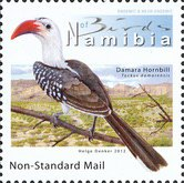 [Birds of Namibia, Typ AAU]