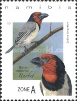 [Birds - Barbets of Namibia, type AGN]
