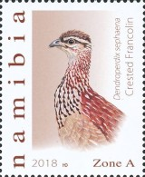 [Birds - Francolins and Spurfowls of Namibia, type AHM]