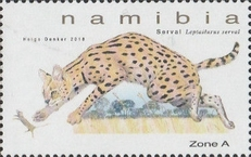 [Small Felines of Namibia, type AHP]