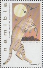 [Small Felines of Namibia, type AHR]
