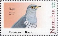 [Birds - Cuckoos of Namibia, Typ AIA]