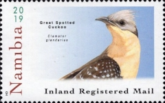 [Birds - Cuckoos of Namibia, Typ AID]