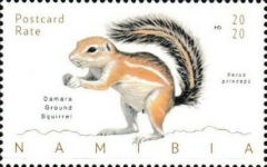 [Fauna - Squrrels of Namibia, type AIR]