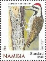 [Birds - Woodpeckers, type AIU]