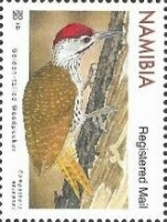 [Birds - Woodpeckers, type AIX]