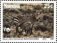 [Endangered Species - Mountain Zebra, type AJ]