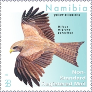 [Birds - Kites of Namibia, Typ AJC]