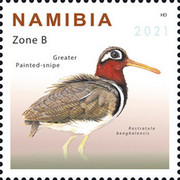 [Birds - Snipes of Namibia, type AJD]