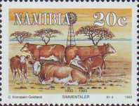 [The 100th Anniversary of Simmentalar Cattle in Namibia, type BU]
