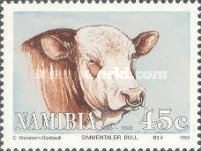 [The 100th Anniversary of Simmentalar Cattle in Namibia, type BW]