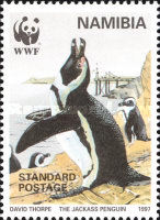 [Endangered Species - Jackass Penguin, type FO]