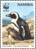 [Endangered Species - Jackass Penguin, type FQ]