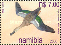 [Ducks of Namibia, type MD]
