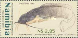 [New Discoveries in Namibia, type PQ]