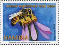 [Honey Bees, Apis mellifica scutellata & Flowers, type QL]