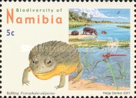 [Flora and Fauna - Biodiversity of Namibia, Typ UA]