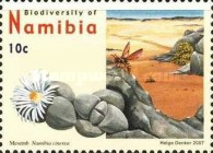 [Flora and Fauna - Biodiversity of Namibia, Typ UB]