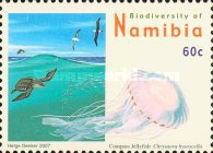 [Flora and Fauna - Biodiversity of Namibia, Typ UE]