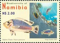 [Flora and Fauna - Biodiversity of Namibia, Typ UG]