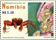 [Flora and Fauna - Biodiversity of Namibia, type WX]