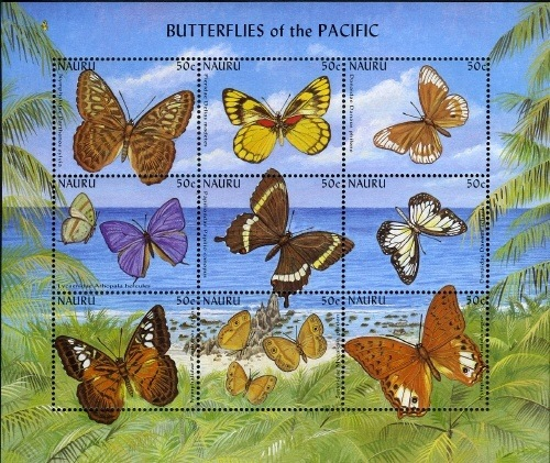 [Butterflies of the Pacific, type ]