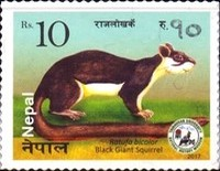 [Fauna - Small Mammals of Nepal, type APE]
