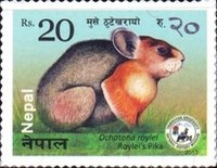 [Fauna - Small Mammals of Nepal, type API]