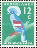 [Western Crowned Pigeon, type P1]