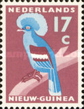 [Western Crowned Pigeon, type P2]