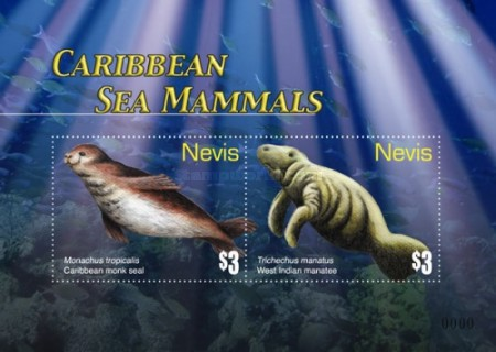 [Marine Life - Whales of the Caribbean, type ]