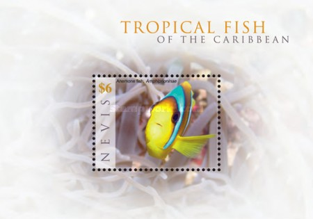 [Marine Life - Tropical Fish of the Caribbean, Typ ]