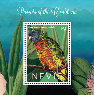 [Parrots of the Caribbean, Typ ]