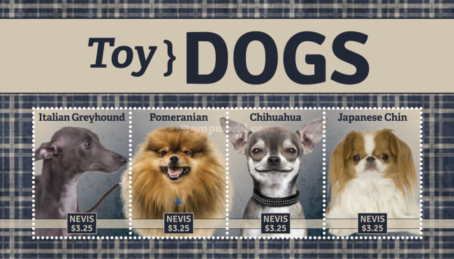 [Toy Dogs, Typ ]