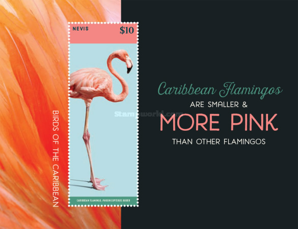 [Pink Birds of the Caribbean, Typ ]