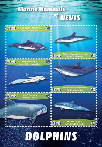 [Marine Life - Dolphins of Nevis, Typ ]
