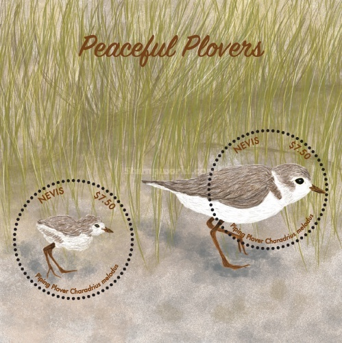 [Birds - Peaceful Plovers, Typ ]