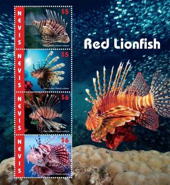 [Marine Life - Red Lionfish, Typ ]