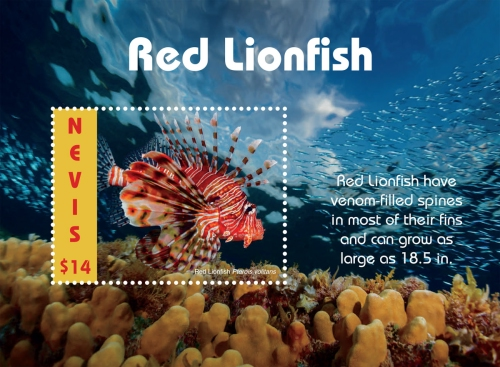 [Marine Life - Red Lionfish, type ]
