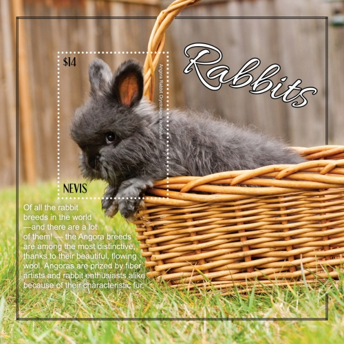 [Rabbits, type ]