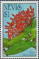 [West Indian Flowers, Typ ZB]