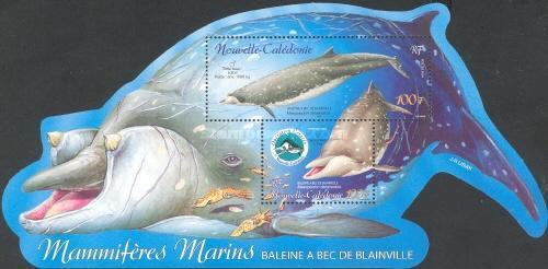 [Campaign for the Protection of Marine Mammals, Typ ]