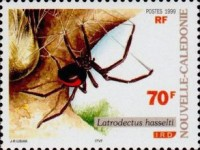 [Spiders, Typ AFG]