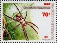 [Spiders, Typ AFH]