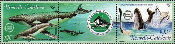 [Campaign for the Protection of Marine Mammals, type AIC]