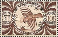 [Free France, type AN12]
