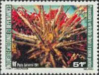 [Airmail - Sea Urchins, Typ NV]