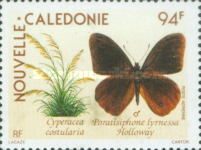 [Airmail - Flowers and Butterflies, type UQ]