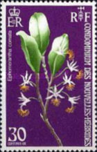 [Orchids - French Version, type GF1]