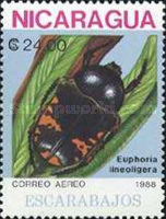 [Airmail - Insects, Typ CAQ]